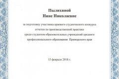 Благодарность Пылихиной Нине Николаевне (за подготовку участника)