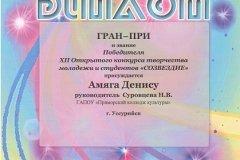 Диплом Гран-при (Созвездие Денис Амяга)