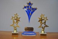 Фотография наград Созвездие